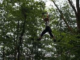 vue sur une personne en train de passer d'un arbre à l'autre