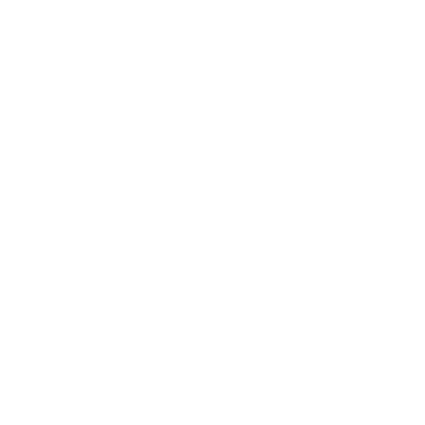 dove_PNG_white.png