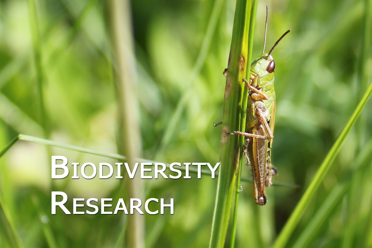Biodiversity_research_01