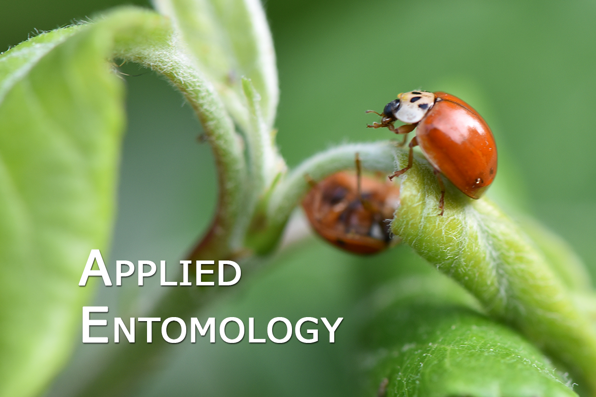 Applied_entomology_02