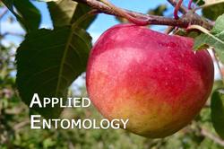 Applied_entomology_01
