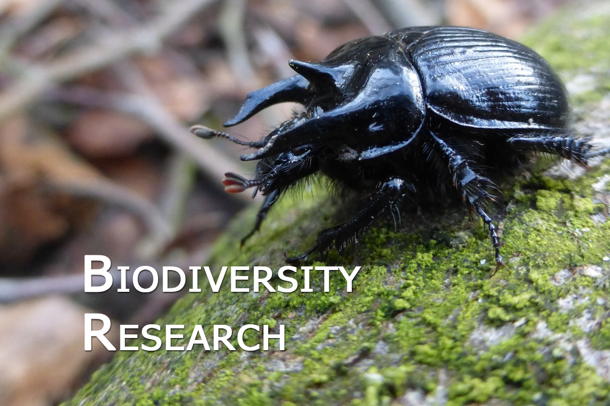 Biodiversity_research_02