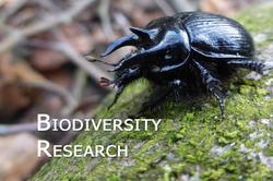 Biodiversity_research_02