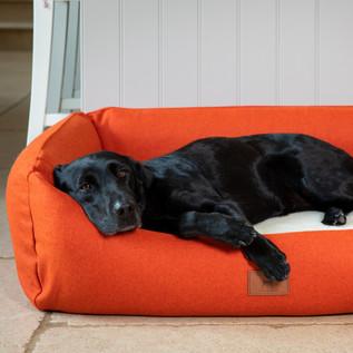 *New* Orange Bed