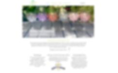 website design by indentmarkeing
