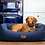 Thumbnail: Cobalt Blue Dog Bed (Grey Wool Topper)