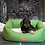 Thumbnail: Apple Green Dog Bed