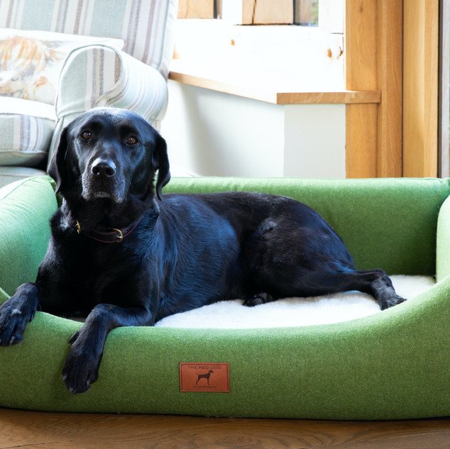 Apple Green Bed