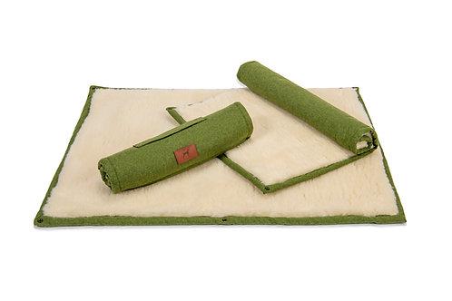 Apple Green Roll Up Dog Mat