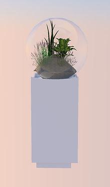 rendu terrarium.jpg