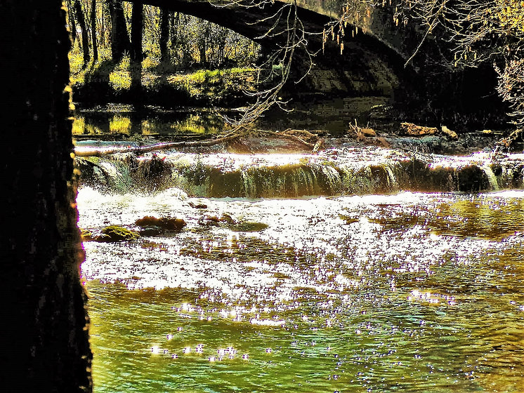 Espaces Verts de la Provence Verte Var photos Reportage