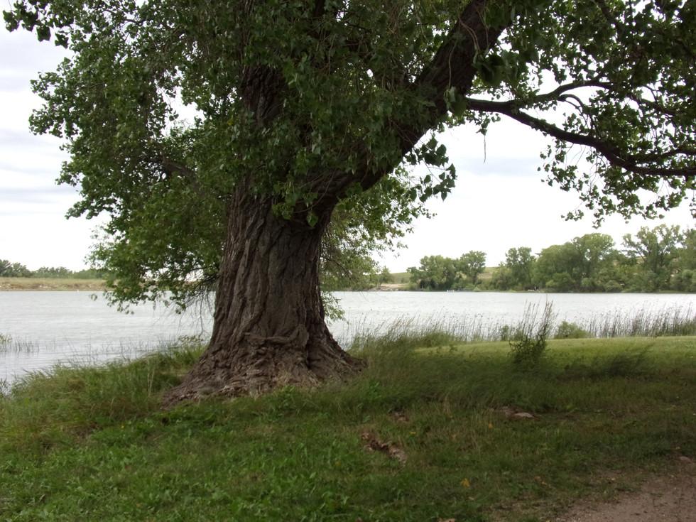 Sheridan Fishing Lake Kansas