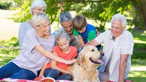 Saiba como os animais de estimação podem ajudar na sua autoestima