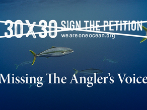 WE ARE ONE OCEAN 30X30 PETITION: PUMP THE BRAKES