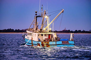 F/V Bear Mike Spark Photo