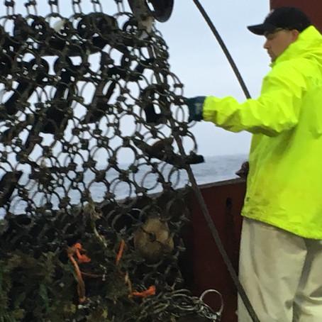 Looking Back at FishNet USA - Bureaucratic Monitoring Systems