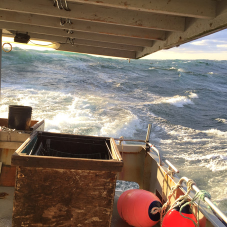 US fishing industry faces Coronavirus disaster