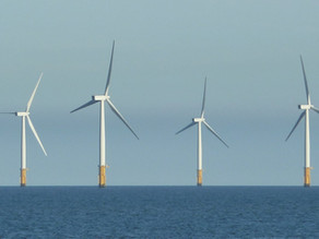 Has the Precautionary Principle been blown away by wind power?