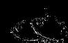 Viking Fresh logo.png