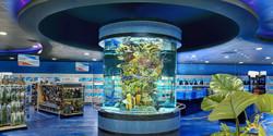 Custom-Saltwater-Aquarium-Reef-Tank-Design