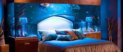 Crea il tuo acquario da sogno!
