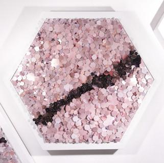 hexagon fram solo5.jpg