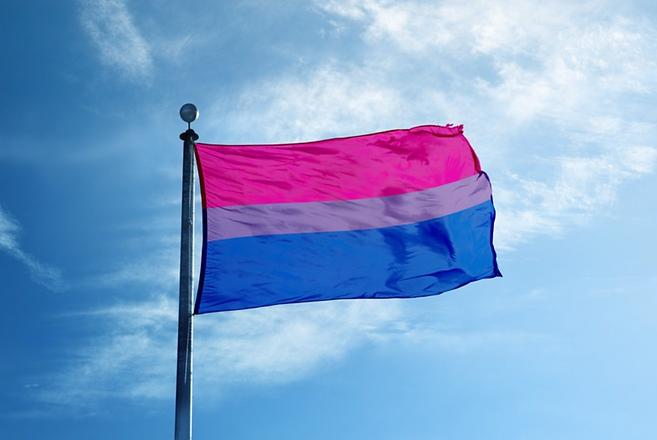 Bi Pride Flag (Purchased).png