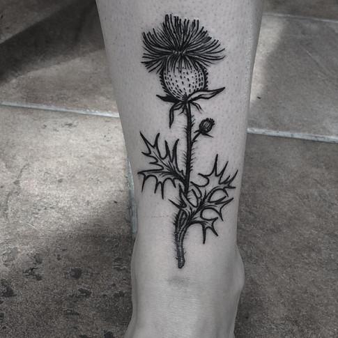 FRA-Faustink-Tattoo008.jpg
