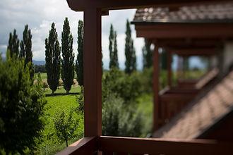 Hotel Schloss Gerzensee Ausblick über Hotelzimmer-Balkone mit Silberpappeln im Hintergrund