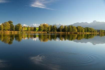 Gerzensee Naturschutzgebiet Berner Alpenkette