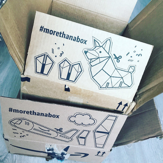 Books & Ideas For Box And Cardboard Creations!