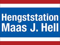Logo_Maas_J_Hell_verkleinert.png