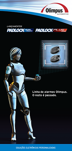 Buzzetti Ass. em Marketing- Impressos