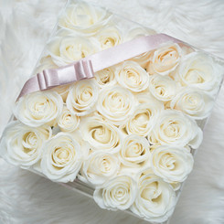 Prive Roses