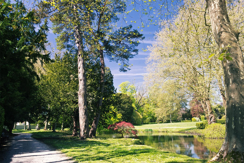 Studio-de-l'Orangerie-promenade