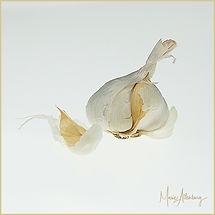 Just Garlic.jpg