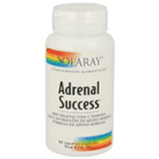 Adrenal Success 60 VegCaps.