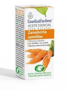 Ae Zanahoria semillas 5ml