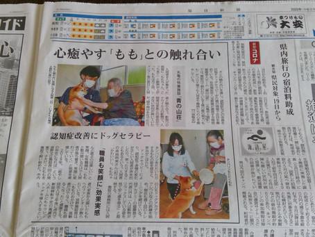 毎日新聞(6.17)に育てたセラピー犬ももちゃんが掲載されました