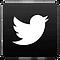 twitlogo_edited.png