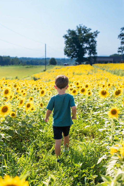 Belews Creek childrens photographer