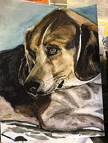 Riley Watercolor.JPG