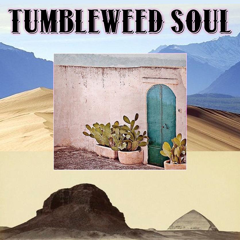 tumbleweed cactus square.jpg