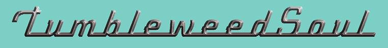 tumbleweed chrome torquoise.jpg