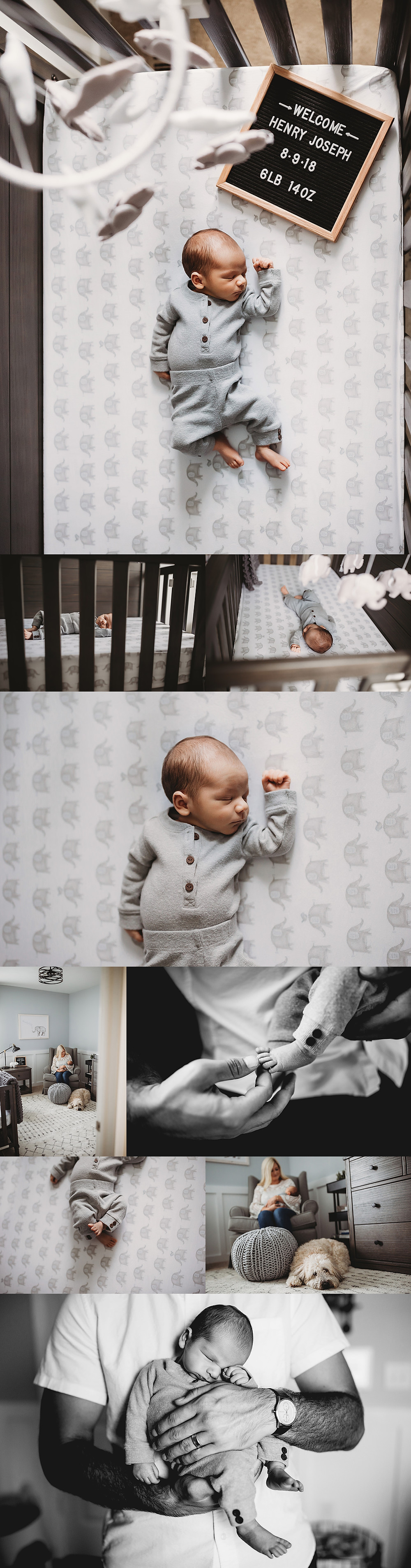 Indianapolis Indiana Newborn Lifetsyle Photographer, Alex Morris Design
