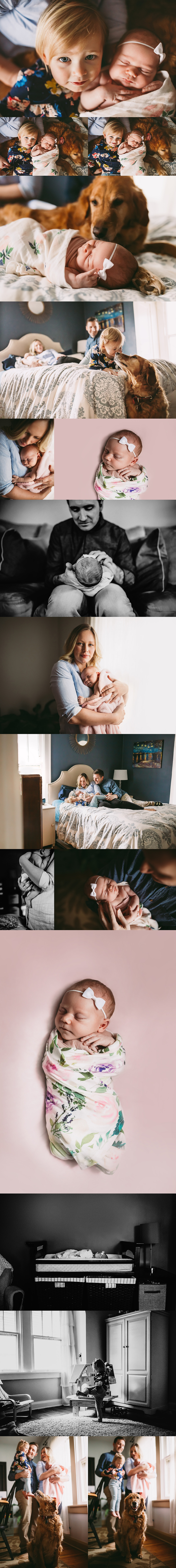Indianapolis Newborn Photographer, Alex Morris Design