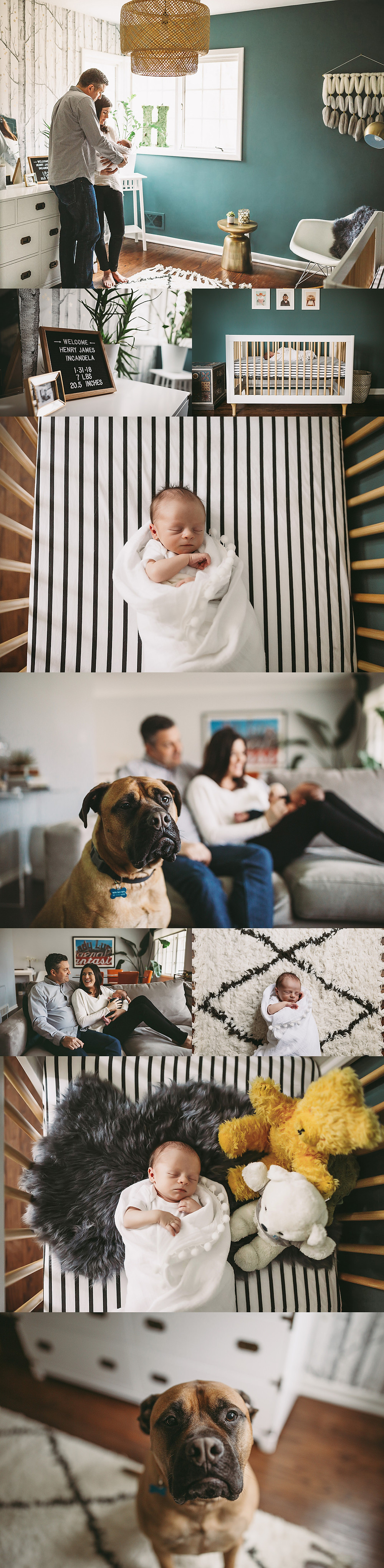 Indianapolis Newborn Photographer, Alex Morris Design