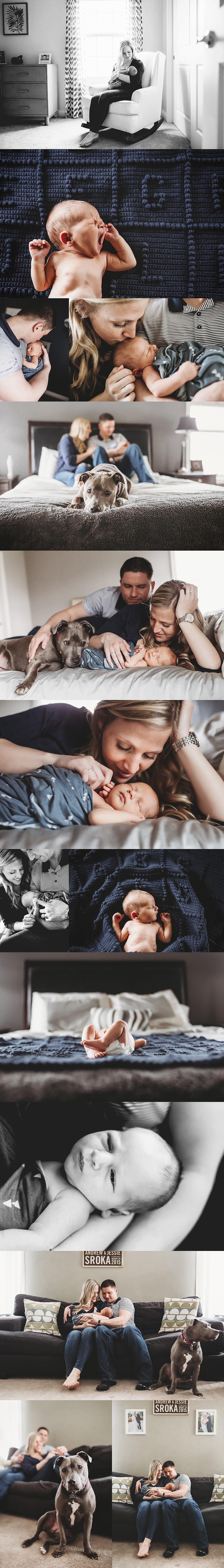 Fishers Indiana Newborn Photographer, Alex Morris Design
