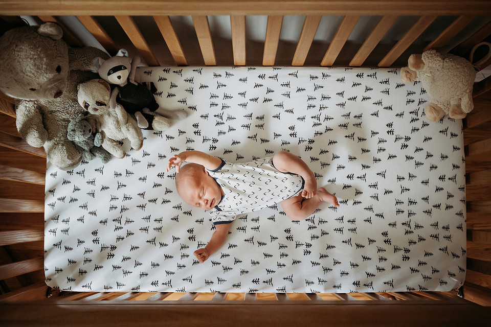 Indianapolis Newborn Photographer cute  dogs  inhome