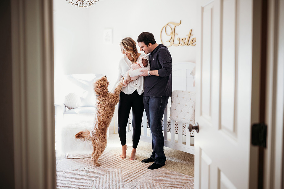 Indianapolis Newborn Photographer lifestyle in home dog